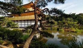 "Curiosità dal Giappone : ""La calma è la virtu dei forti"""