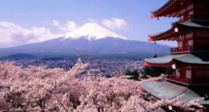 Il giapponese a fumetti : Lezione 13