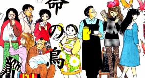 Star Comics annuncia Unmei no Tori