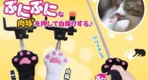 Giappone: Arriva il Selfie felino