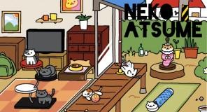 Neko Atsume: Il videogioco sui gatti arriva sul Play Store e App Store