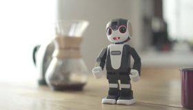 """Sharp annuncia una versione """"economica"""" del robottino Android"""