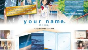 Collector's Edition incompleta per Your name