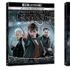 Animali Fantastici: I Crimini di Grindelwald disponibile in Home Video dal 14 Marzo 2019