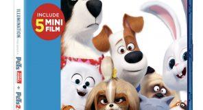 Universal Pictures: Le uscite Home Video DVD e Bluray di Ottobre 2019